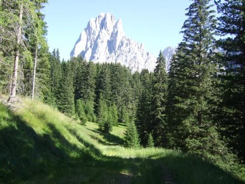 Foto: hofsab / Mountainbike Tour / Rund um den Langkofel über Col Rodela (2484 m) / Downhill zum Monte Pana / 27.08.2009 21:39:11