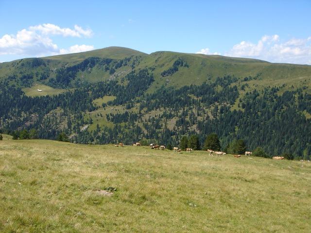 Foto: berglerin / Wander Tour / Mühlhauserhöhe (2216m) / 04.08.2009 21:57:15