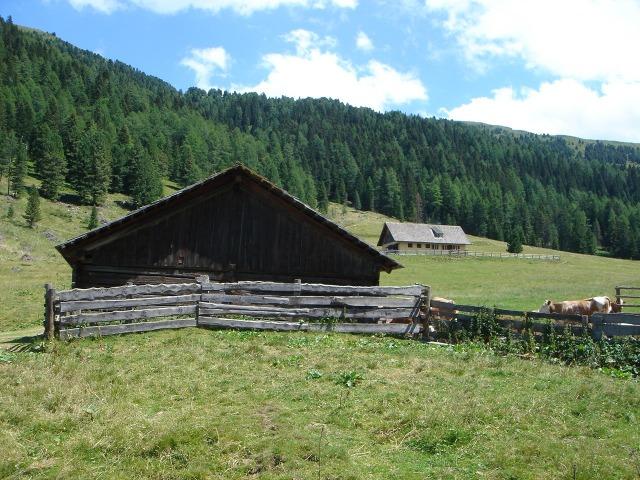 Foto: berglerin / Wander Tour / Mühlhauserhöhe (2216m) / Sameralm = Ausgangspunkt / 04.08.2009 21:53:36