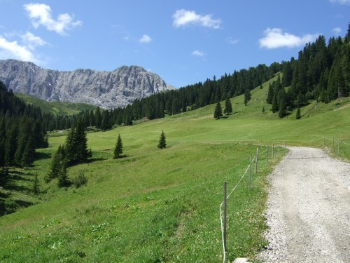 Foto: hofchri / Mountainbike Tour / Rund um den Schlern über Eselrücken (2560 m) und Prügelweg / nach der Mahlknechthütte / 27.08.2009 12:17:21