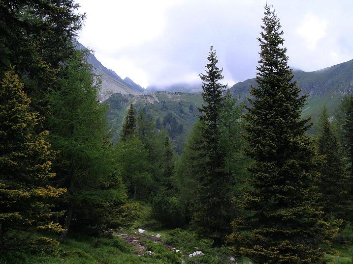 Foto: Andreas Koller / Wander Tour / Über den Gefrorenen See zum Dreistecken-Grat (2449 m) / Start bei der Edelrautehütte / 07.08.2009 16:52:25