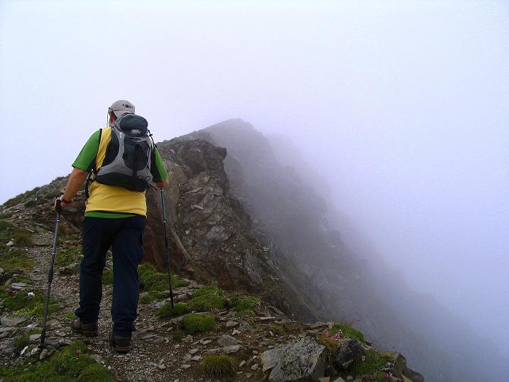 Foto: Andreas Koller / Wander Tour / Über den Gefrorenen See zum Dreistecken-Grat (2449 m) / Die letzten Meter zum Dreistecken / 07.08.2009 16:47:37