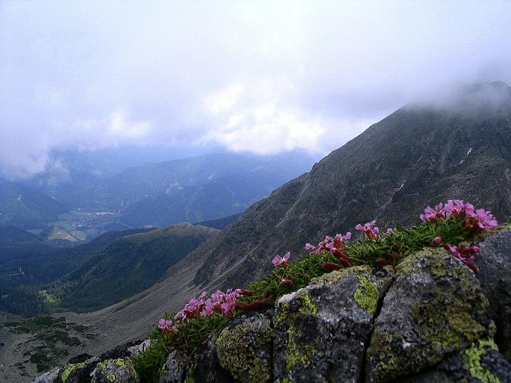 Foto: Andreas Koller / Wander Tour / Über den Gefrorenen See zum Dreistecken-Grat (2449 m) / 07.08.2009 16:42:57