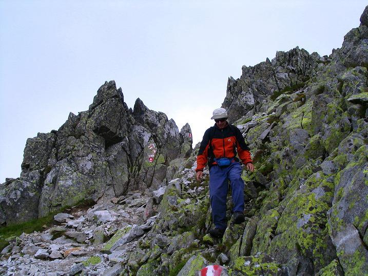 Foto: Andreas Koller / Wander Tour / Über den Gefrorenen See zum Dreistecken-Grat (2449 m) / Abstieg vom Bösenstein am Normalweg / 07.08.2009 16:31:20