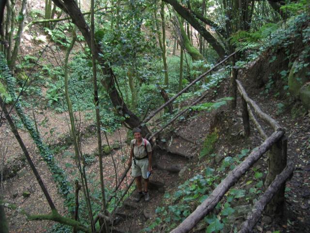 Foto: elipes / Wander Tour / Durch den Barranco de la Zarza / Im Barranco La Zarza / 10.08.2009 18:11:20
