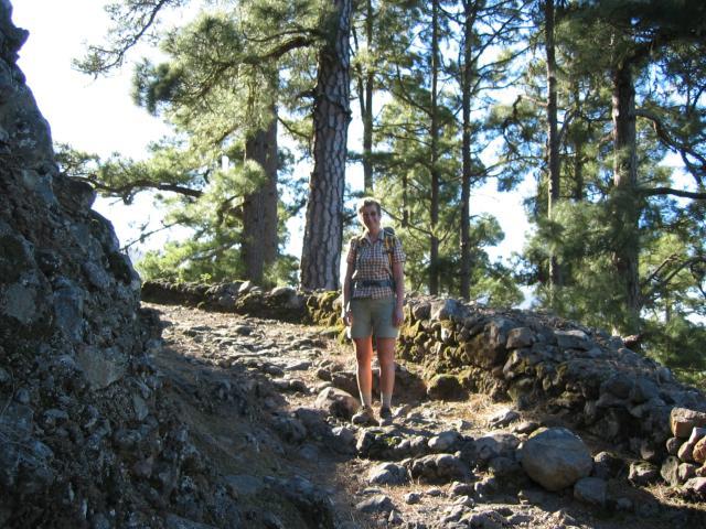 Foto: elipes / Wander Tour / Von der Ermita Virgen del Pino zur Punta de los Roques / Aufstiegsweg zum Reventonpass / 10.08.2009 19:42:57