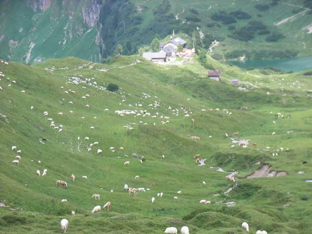 Foto: felskraxler / Klettersteig Tour / Lachenspitze Nordwand Klettersteig / Landsberger Hütte / 11.08.2009 00:38:45