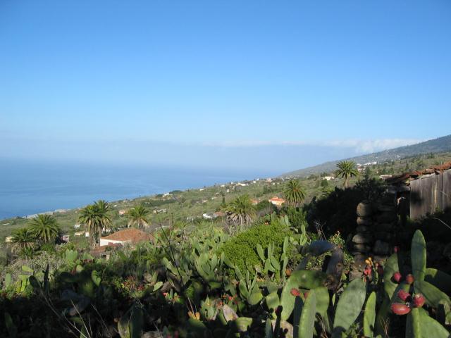 Foto: elipes / Wander Tour / Vom Mirador El Time zum Torre del Time / Blick nach La Punta / 11.08.2009 09:18:56