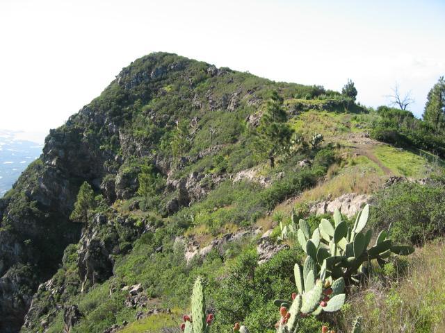 Foto: elipes / Wander Tour / Vom Mirador El Time zum Torre del Time / Am Weg zum Torre del Time / 11.08.2009 09:19:36