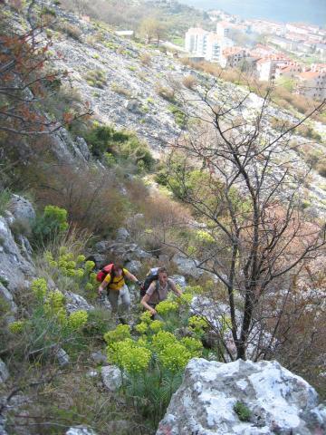 Foto: pepi4813 / Wander Tour / Von Dobrota nach Mali Zalazi / Aufstieg von Dobrota / 11.08.2009 11:40:18