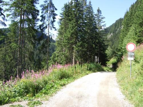 Foto: hofsab / Mountainbike Tour / Seiser Alm-Runde über Seiser Alm-Haus (2145 m)  / Auffahrt zur Seiser Alm / 27.08.2009 21:20:20