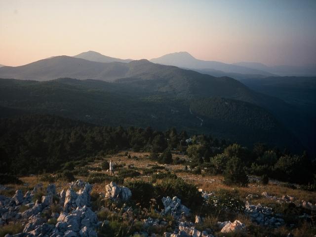 Foto: berglerin / Wander Tour / Orljak (1106m) / Ganz hinten in Bildmitte sieht man den Vojak, den höchsten Berg von Istrien / 22.08.2009 12:33:09