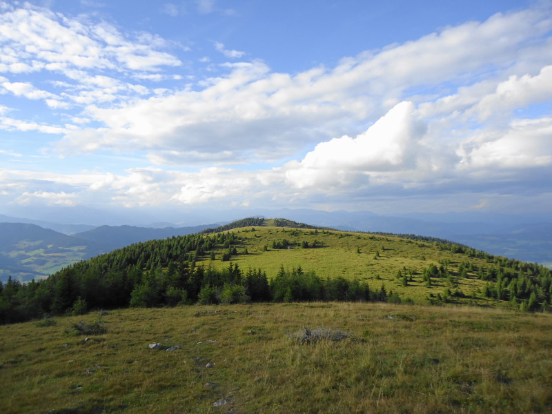 Foto: Günter Siegl / Wander Tour / Familienwanderung im Naturpark Grebenzen / Zweite und Erste Grebenzenhöhe / 31.08.2014 21:09:22