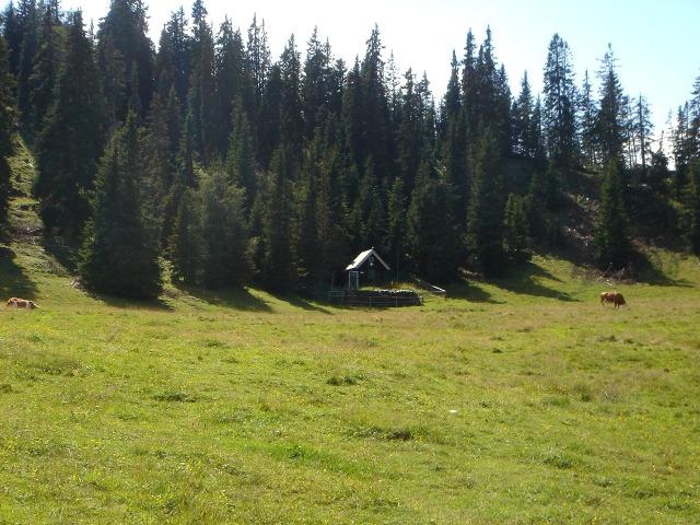Foto: berglerin / Wander Tour / Familienwanderung im Naturpark Grebenzen / Bergrettungshütte / 22.08.2009 12:51:47