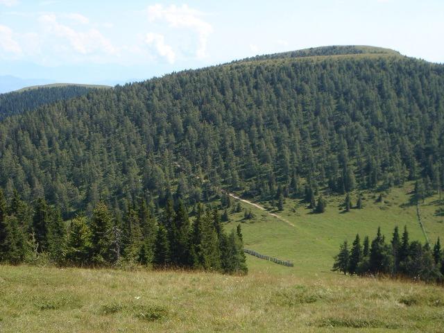 Foto: berglerin / Wander Tour / Familienwanderung im Naturpark Grebenzen / Rechts sieht man die beiden anderen Grebenzenhöhen / 22.08.2009 12:51:04