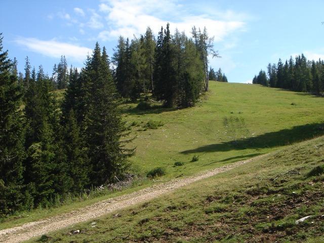Foto: berglerin / Wander Tour / Familienwanderung im Naturpark Grebenzen / 22.08.2009 12:49:20