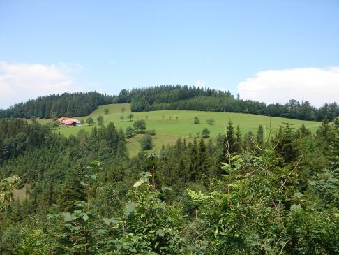 Foto: hanna84 / Wander Tour / Auf das Kruckenbrettl / 24.08.2009 19:03:01