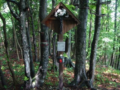 Foto: hanna84 / Wander Tour / Auf das Kruckenbrettl / Mitten im Wald steht das Gipfelkreuz / 24.08.2009 19:01:57