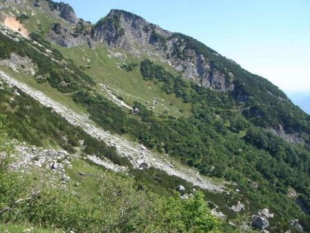 Foto: hanna84 / Wander Tour / Über die Hochkampschneid zum Scheibenkaser / Der Weg herüber zum Scheibenkaser / 25.08.2009 19:26:22