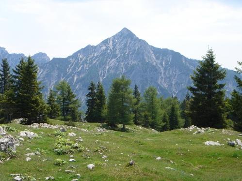 Foto: hanna84 / Wander Tour / Familientaugliche Almwanderung zur Thorhöhe / Rinnkogel / 25.08.2009 20:35:15