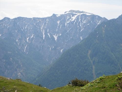 Foto: hanna84 / Wander Tour / Familientaugliche Almwanderung zur Thorhöhe / Gamsfeld / 25.08.2009 20:34:53