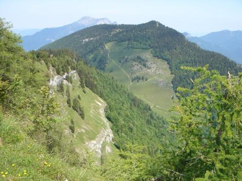 Foto: hanna84 / Wander Tour / Familientaugliche Almwanderung zur Thorhöhe / Bleckwand / 25.08.2009 20:34:15