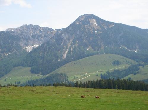 Foto: hanna84 / Wander Tour / Familientaugliche Almwanderung zur Thorhöhe / 25.08.2009 20:31:22