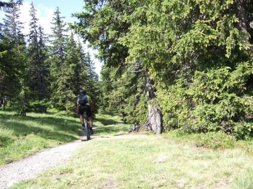 Foto: hofsab / Mountainbike Tour / Rund um das Spielberghorn über Asitzkopf (1914 m) und Schreiende Brunnen / da muss man schon fahren / 28.08.2009 19:04:56