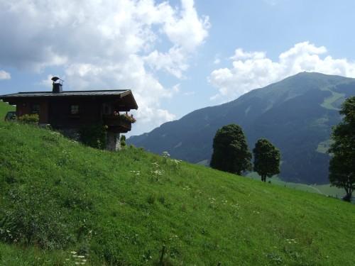 Foto: hofsab / Mountainbike Tour / Rund um das Spielberghorn über Asitzkopf (1914 m) und Schreiende Brunnen / 28.08.2009 19:07:33