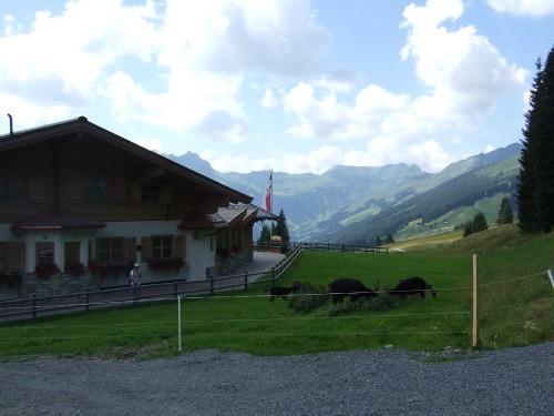 Foto: hofsab / Mountainbike Tour / Rund um das Spielberghorn über Asitzkopf (1914 m) und Schreiende Brunnen / bei der Rossfeldhütte / 28.08.2009 19:08:27