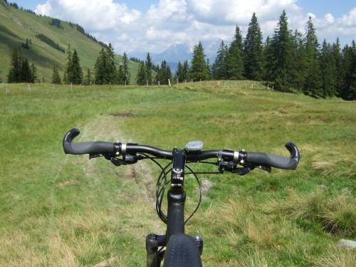 Foto: hofsab / Mountainbike Tour / Rund um das Spielberghorn über Asitzkopf (1914 m) und Schreiende Brunnen / sehr sumpfiger Pfad am Sattel / 28.08.2009 19:08:52