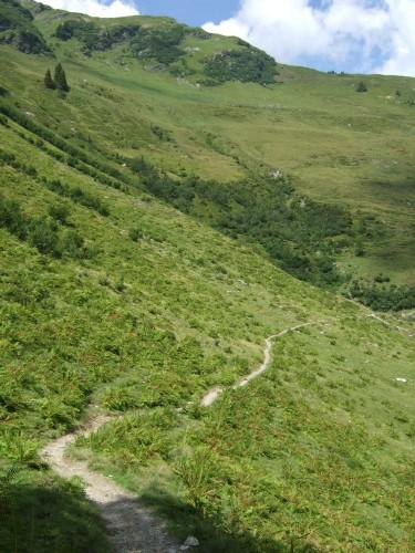 Foto: hofsab / Mountainbike Tour / Rund um das Spielberghorn über Asitzkopf (1914 m) und Schreiende Brunnen / die angeblich gesperrte Schiebestrecke / 28.08.2009 19:09:44