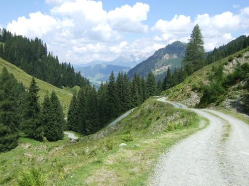 Foto: hofsab / Mountainbike Tour / Rund um das Spielberghorn über Asitzkopf (1914 m) und Schreiende Brunnen / jetzt rasant weiter / 28.08.2009 19:10:03