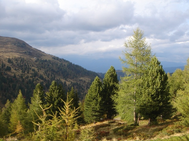 Foto: berglerin / Wander Tour / Kleine Karneralmrunde / 27.08.2009 17:32:07