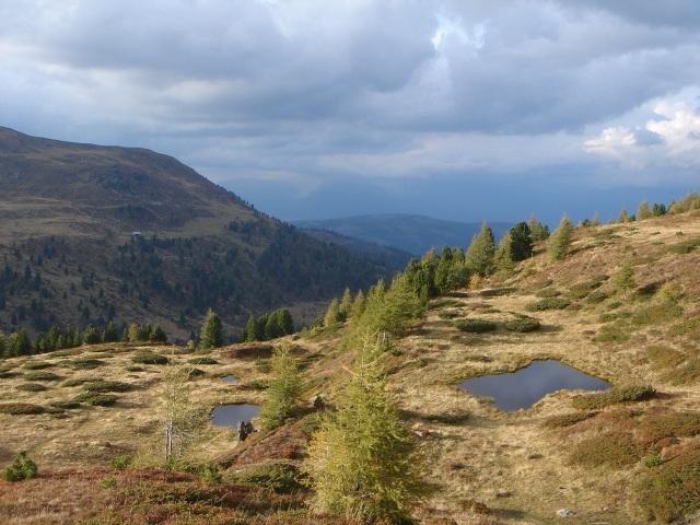 Foto: berglerin / Wander Tour / Kleine Karneralmrunde / Am Weg zum Kleinen Königstuhl / 27.08.2009 17:31:55