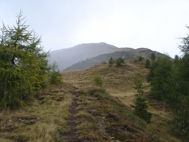 Foto: berglerin / Wander Tour / Gabesitten (2665m) / Der lange Wiesenhang zum Gipfel / 27.08.2009 17:52:42