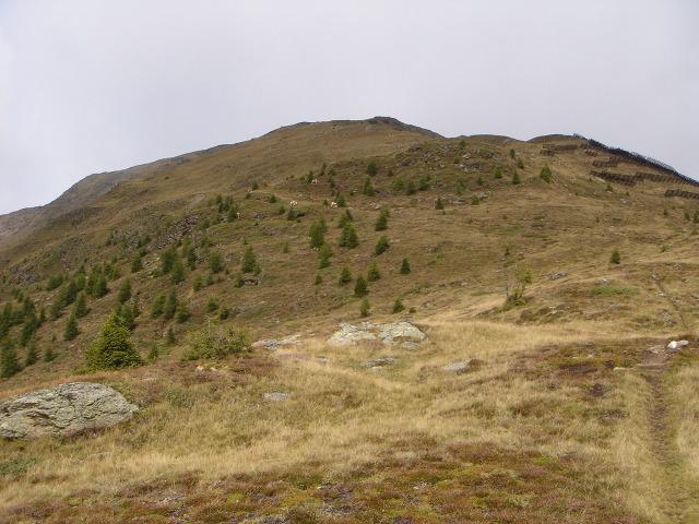 Foto: berglerin / Wander Tour / Gabesitten (2665m) / 27.08.2009 17:47:51
