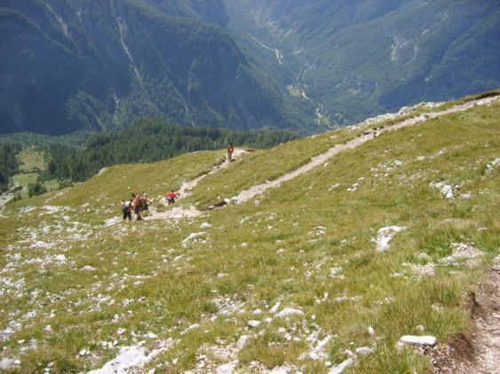 Foto: winsch / Klettersteig Tour / Prisojnik Fensterweg / Abstieg Edelweißwiese / 29.08.2009 16:40:54