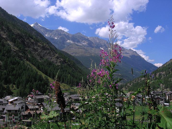 Foto: Andreas Koller / Klettersteigtour / Erlebnisweg Almagellerhorn (1999 m) / Saas Almagell / 07.09.2009 23:02:17