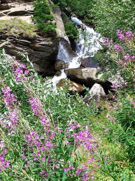 Foto: Andreas Koller / Klettersteig Tour / Mini-Klettersteig Saas Grund (1670 m) / 03.09.2009 20:28:53