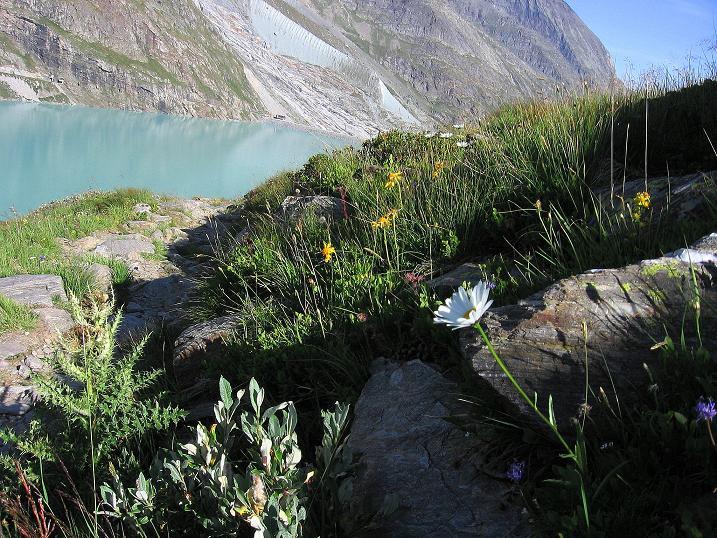 Foto: Andreas Koller / Wander Tour / Stelli - Aussichtsloge über dem Stausee Mattmark (3357 m) / 03.09.2009 23:39:14
