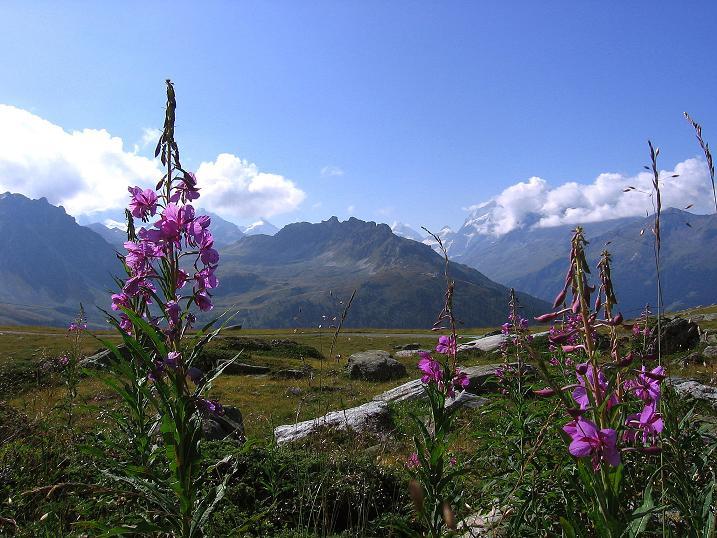 Foto: Andreas Koller / Wander Tour / Bella Tola - Aussichtsbalkon der Walliser Alpen (3026 m) / 05.09.2009 18:51:41