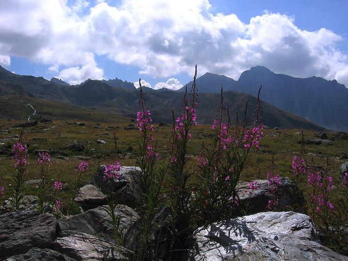 Foto: Andreas Koller / Wander Tour / Bella Tola - Aussichtsbalkon der Walliser Alpen (3026 m) / 05.09.2009 18:49:22