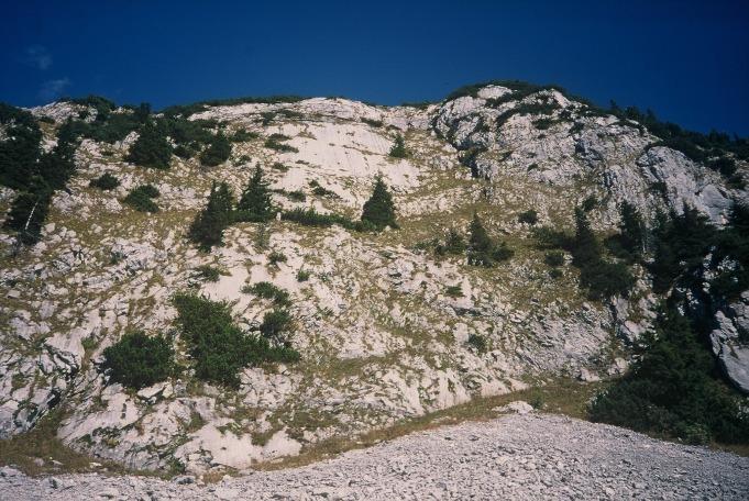 Foto: Manfred Karl / Kletter Tour / Klettern am Roßstein und an der Roßsteinnadel / Sonnenplatte am Roßstein / 14.06.2011 22:44:18