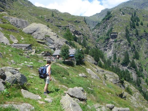 Foto: Manfred Karl / Wander Tour / Eindrucksvoller Dreitausender über dem Vinschgau / Ziegenkäsealm / 31.08.2009 16:19:56