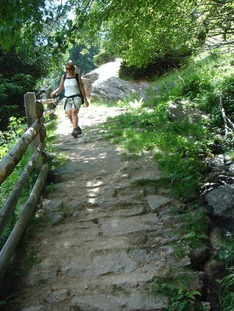 Foto: Manfred Karl / Wander Tour / Eindrucksvoller Dreitausender über dem Vinschgau / 31.08.2009 16:19:26