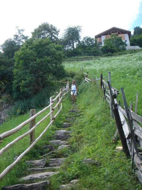 Foto: Manfred Karl / Wander Tour / Eindrucksvoller Dreitausender über dem Vinschgau / 31.08.2009 16:18:30