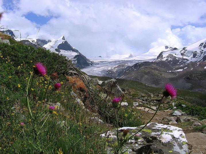 Foto: Andreas Koller / Wander Tour / Wanderdreitausender Oberrothorn (3415 m) / 05.09.2009 00:10:10