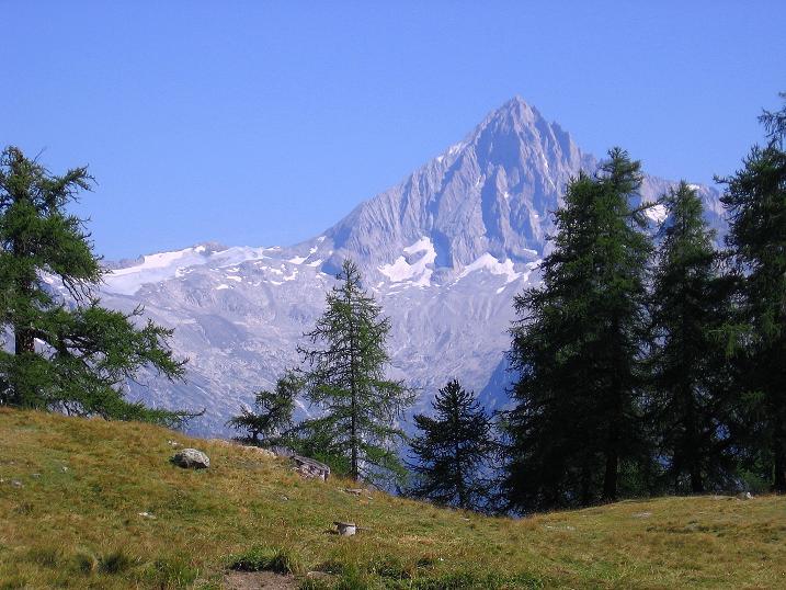 Foto: Andreas Koller / Wander Tour / Über den Augstbordgrat auf das Dreizehntenhorn (3052 m) / Bietschhorn (3934 m) / 07.09.2009 21:42:57