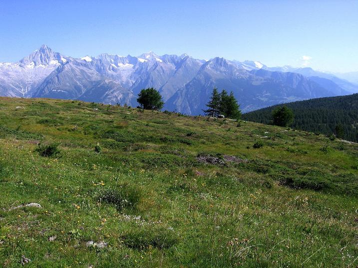 Foto: Andreas Koller / Wander Tour / Über den Augstbordgrat auf das Dreizehntenhorn (3052 m) / 07.09.2009 21:42:04